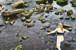 Stepping Stones by langleyo https://flickr.com/photos/langleyo/3806380958 shared under a Creative Commons (BY-ND) license